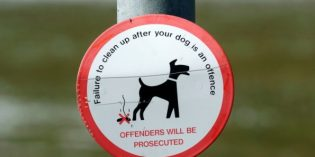 Dog control fines come into force in Leeds next month