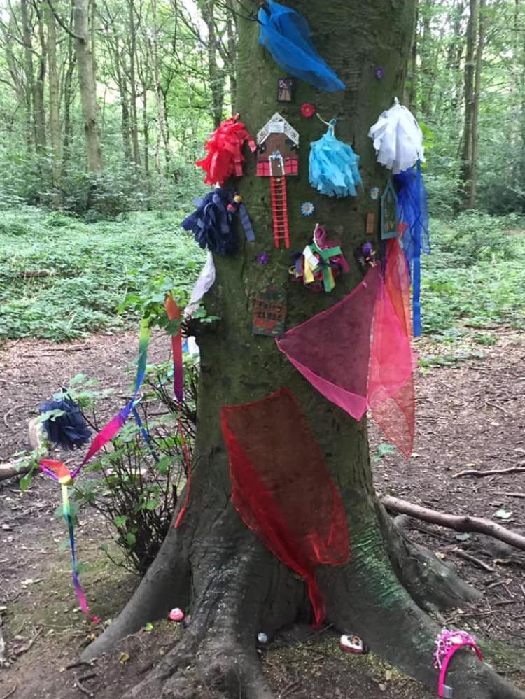 Fairy woodland 4