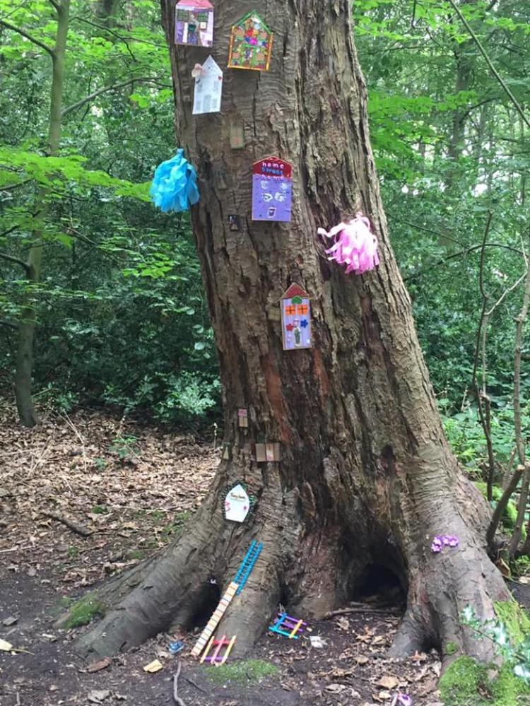 Fairy woodland 5