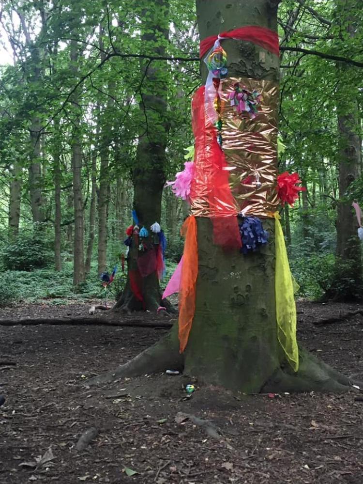 Fairy woodland 7