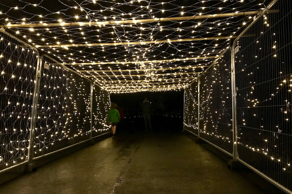 Lantern Festival 2019 03