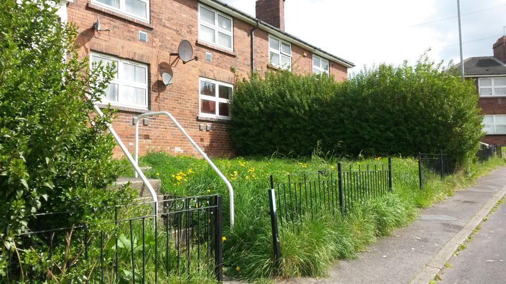 Millshaw garden before 2