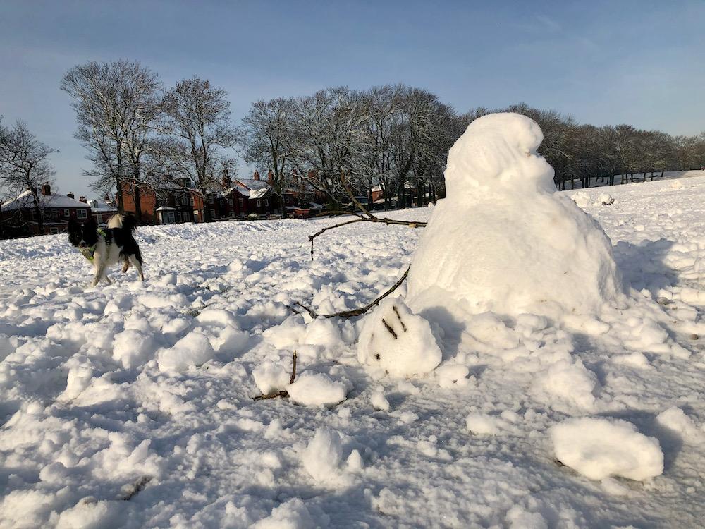 Snow 21 Dog and snowman Cross Flatts Park Sue Talbot