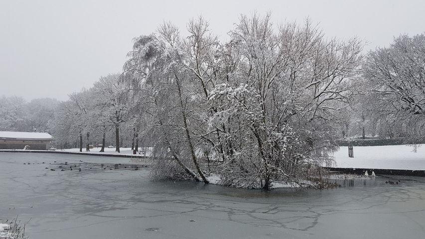 Snow 21 Middleton Park lake 1