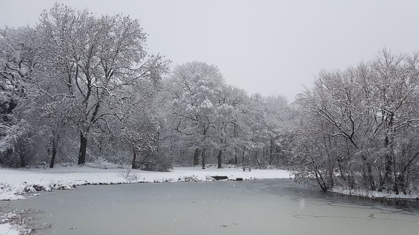 Snow 21 Middleton Park lake 2