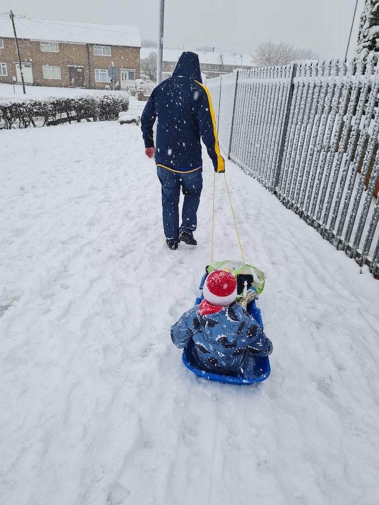 Snow 21 School Sled McHale-Webster