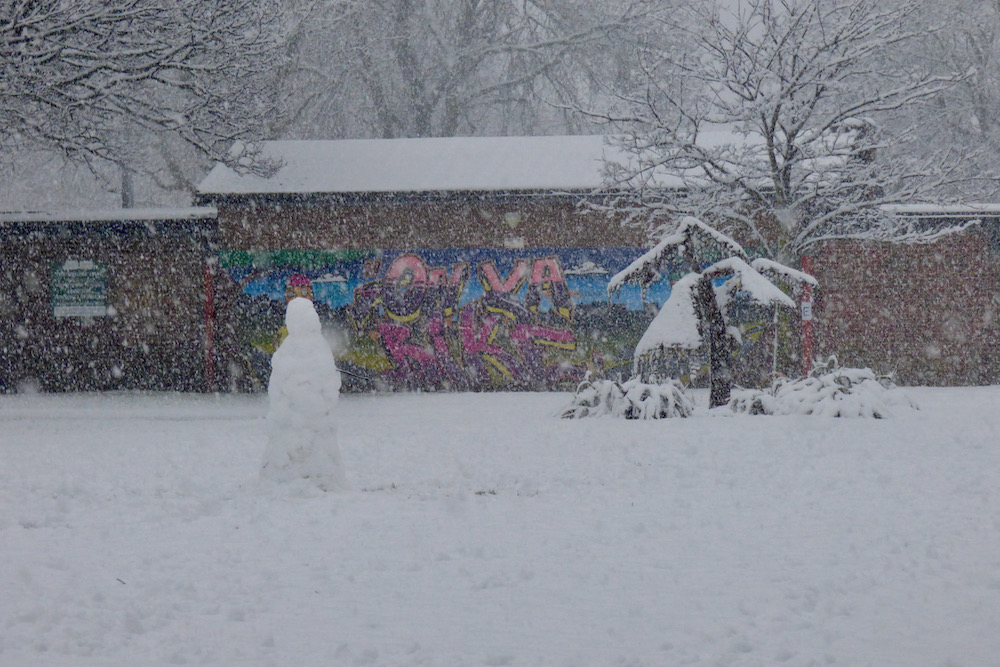 Snow 21 Snowman Watsonia Cross Flatts Park Jeremy Morton