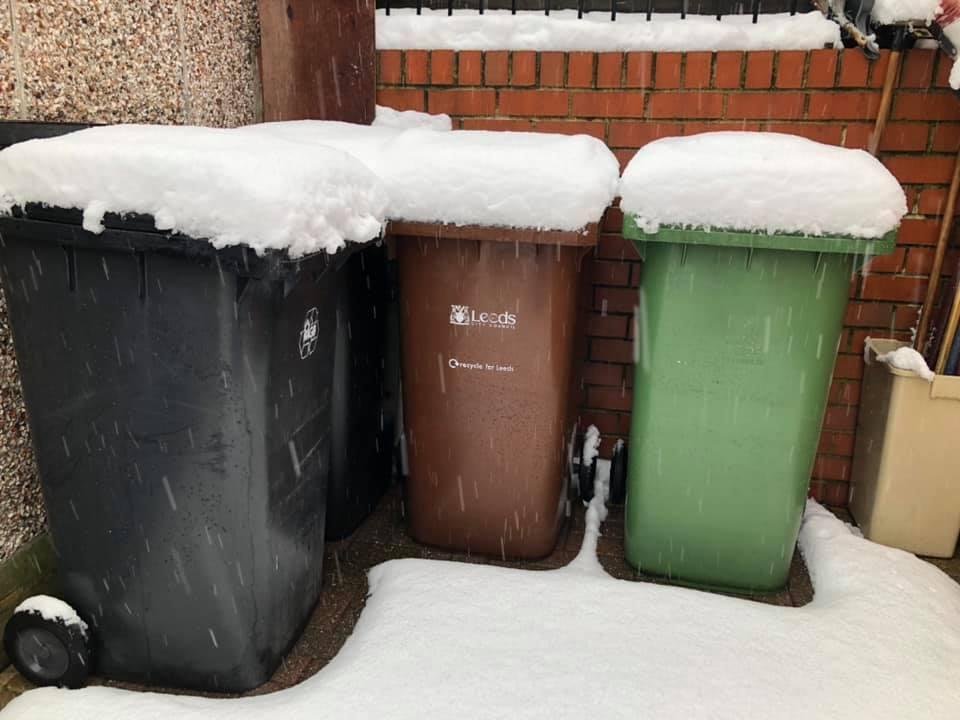 Snow 21 bins Naseem